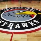 College Park Skyhawks Unveil Home Court For Inaugural Season (photos)