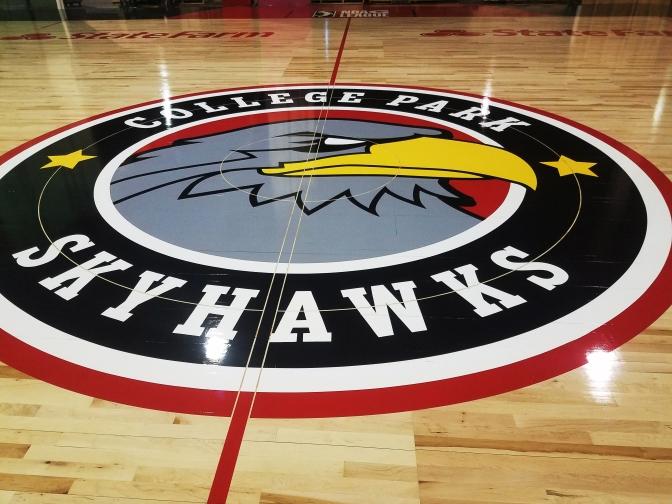 Skyhawks Court, Logo